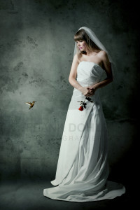 The Hummingbird and the Bride